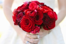 Red Weddings / Red Wedding Inspiration  / by Aisle Perfect - Wedding Blog