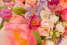 Wedding pink-coral
