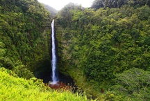Waterfalls / Mystic, marvelous waterfalls in Hawaii. / by Discover Hawaii Tours