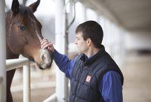 Horse Health