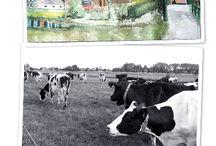 Barwoutswaarder / Barwoutswaarder a road between Woerden and Nieuwerbrug with farmers, houses, de Oude Rijn etc