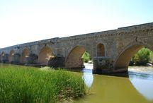 Puente de piedra o puente Mayor de Toro