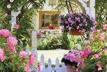 puertas,ventanas y flores.