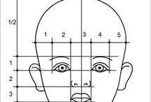 пропорции лица