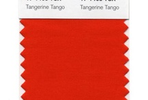 tangerine tango 2012 pantone color of the year / by Erin McLeod