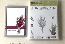 Lots of Lavender Stampin Up