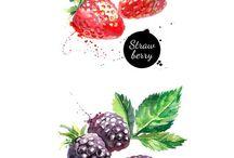 fruit n vegy