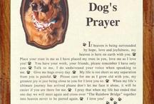 A Dog's Prayer