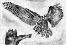 new owl piece