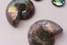 Crystals Fossils Minerals