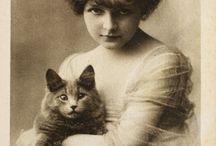Antique cat photos
