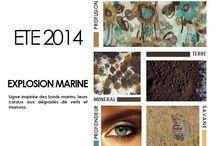 EXPLOSION MARINE ÉTÉ 2014 / Découvrez notre thème EXPLOSION MARINE, maillot de bain inspiration fonds marins.Tendance maillots de bain 2014. Collection maillots de bain 2014