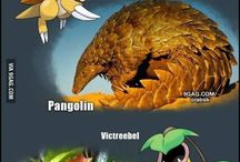 Pokémon Origins / The real and the mythical creatures that inspired pokemon