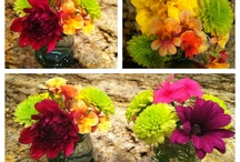 Garden stuff / Love to garden... I'm always looking for good ideas. / by Julie Forester