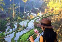Indonesia <3