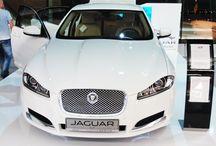 Stoisko Jaguara / Nasza produkcje