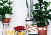 Pop & Scott Pots / Tribal Pot Range / Pop & Scott Tribal Pot Range is inspired by tribal designs and ritual from all over the world.  Styling by Poppy Lane, Photography by Jessica Tremp