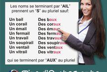 Gramática francesa fácil / Aquí encontraras consejos prácticos y tips que te facilitarán el aprendizaje del francés utilizando únicamente las reglas esenciales y de forma simplificada.
