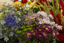 beautiful cut flowers at Turley's Florist / we always have a large selection of the freshest flowers, you can make your own bouquet and choose from one the the many we have in the store