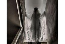 Halloween / by Lisa Petty