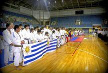 Karate Uruguay