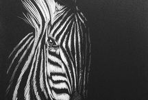 drawings on Black paper
