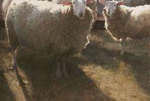 Heide, schapen en herder