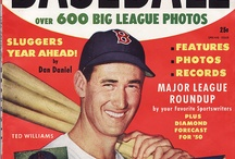 Ted Williams / Baseball