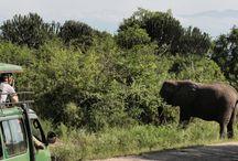 UgandaTTT / Alcune foto in anteprima di Dino Bonelli all'UgandaTTT. Scopri di più sul nostro sito!
