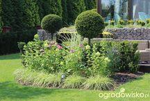 Topiary-kulki