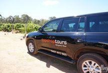 Top Drop Tours, Margaret River / http://travellingcorkscrew.com/2014/02/13/margaret-river-wine-tours-top-drop/