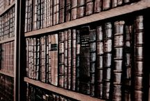 lit: the cemetery of forgotten books / books are mirrors: you only see in them what you already have inside you