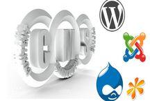 Website Development Services / Professional web development by leading website design company Ahmedabad