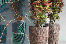 Exklusivgefässe / Exklusivgefäße sind der Traum für Menschen, die etwas Besonderes suchen. Wir von Gedike Begrünungen haben eine große Auswahl an unterschiedlichsten Gefäßen aus z.B. Holz, Keramik, Muscheln, Bananenblättern und vielem mehr. Informieren Sie sich noch heute bei uns!