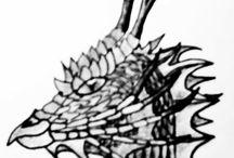 Dragon Drawings