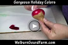 gourds --- tutorials / by Pamela Knowles