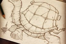 želva-toortle