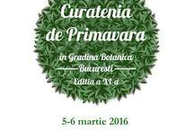 Voluntariat Gradina Botanica