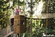 Tree Houses / Domečky na stromech