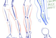 Anatomy ☺