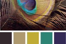 paleta de colores y gráfica
