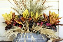 Fall Containers / Fun ideas for your Fall planters