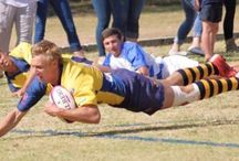 Sport-Rugby