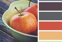 Color Inspiration / by Erin Handley