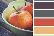 Palets / colours combinations