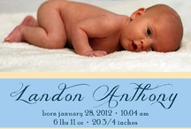 Baby photography / by Kay Hook