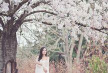 photography / by Kia Vang