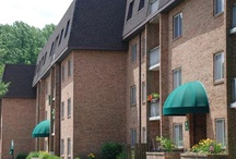 Pet Friendly Apts-New Jersey / Pet Friendly Apartments in New Jersey (NJ).