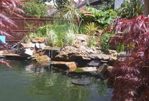 Water features: Landscaping