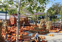 Harvest Fair / A bounty of fun for everyone at the Wisconsin State Fairgrounds!